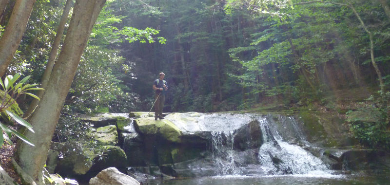 Hiker crossing Big Beechy Falls on Middle Fork Trail, Cranberry Wilderness